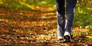 camminare_nella_natura