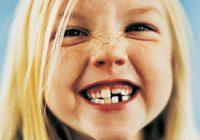 from-milk-teeth-to-adult-teeth