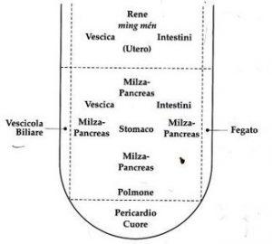 mappa della lingua